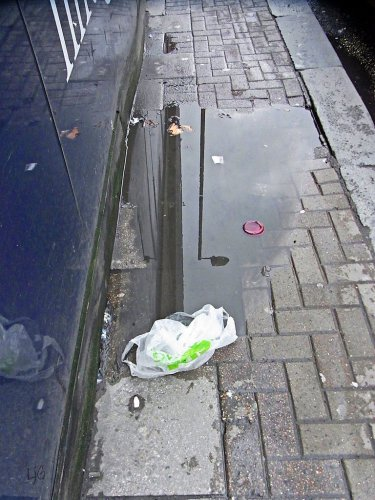 plastic in a puddle