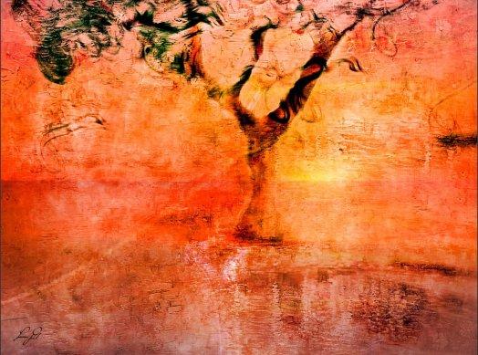sea salt poem - sunset tree photoart