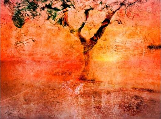sea salt poem - sunset tree photoart