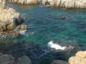 rock and turquoise dreams