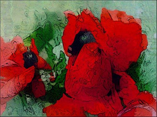 neruda_poem_poppy_photoart