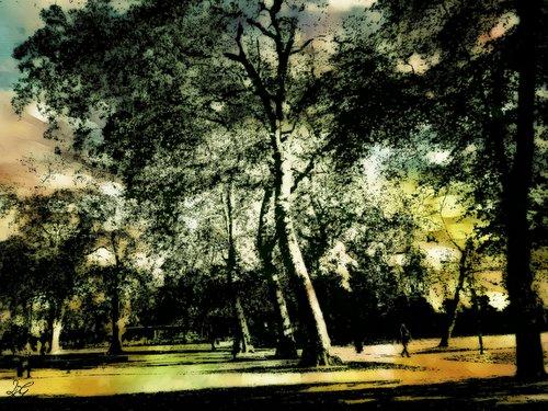 poem - summer cusp