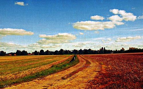 crossroads_micro_poem