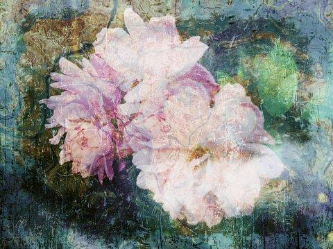 1-rose_parings_poem
