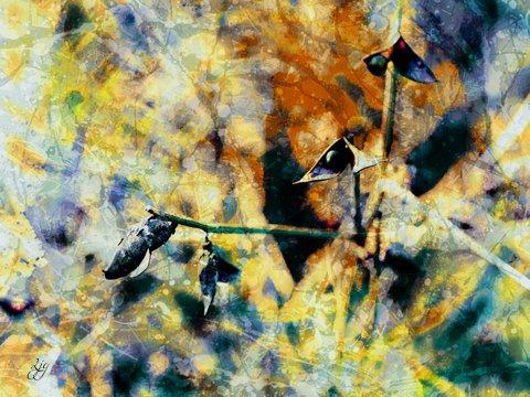 photoart & poem - november now