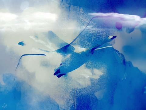 whooper swan photoart & poem - 2017 Laura Granby